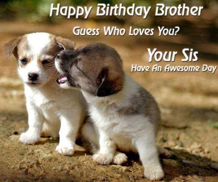 Happy birthday brother quotes happy birthday bro happy birthday brother quotes happy birthday bro voltagebd Gallery